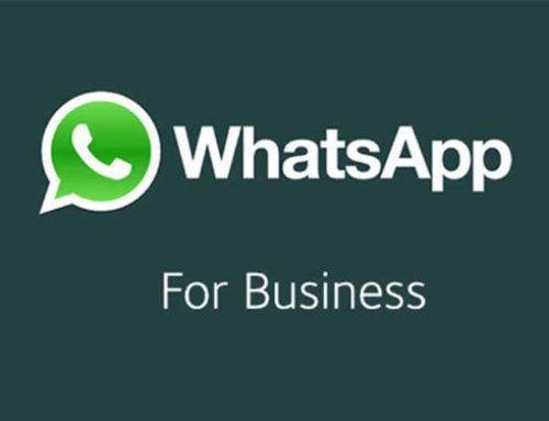WhatsApp lance une application Pro pour les PME