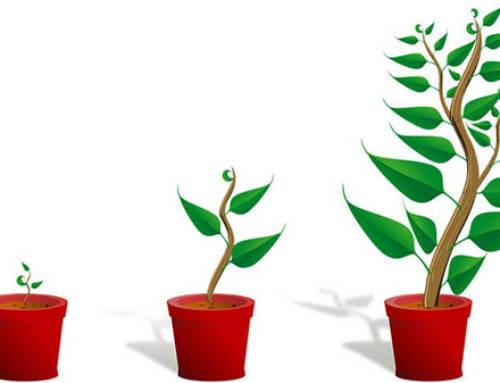Growth driven design : une nouvelle méthode pour refondre son site web