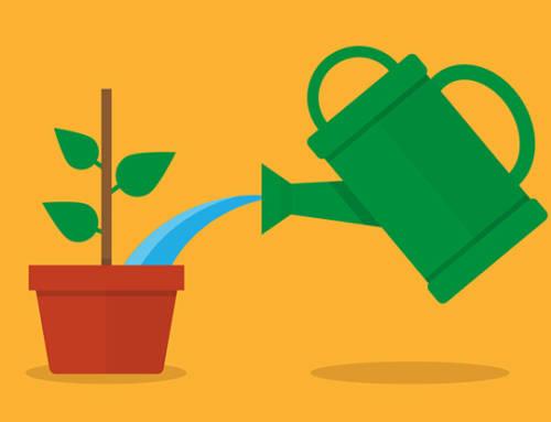 Le lead nurturing pour les PME BtoB. A quoi ça sert ?